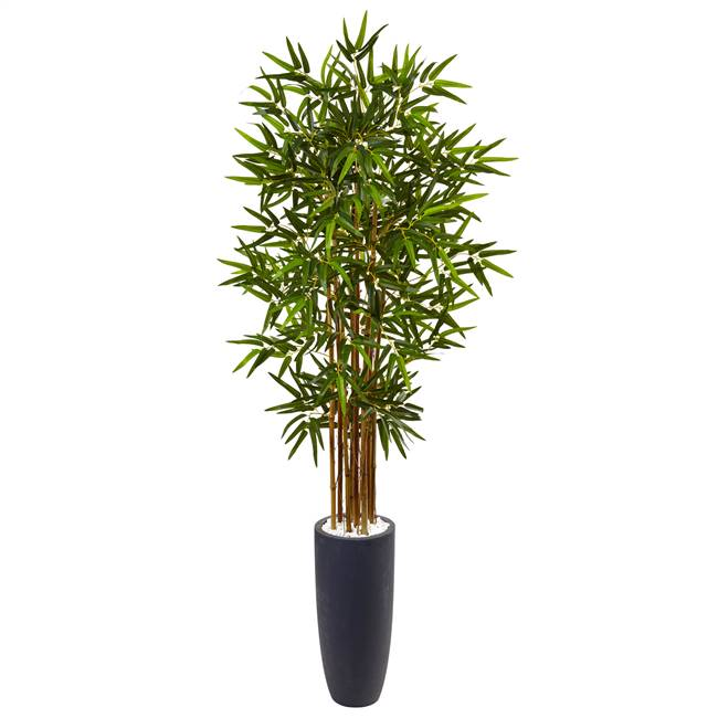 5' Bamboo Tree in Gray Cylinder Planter