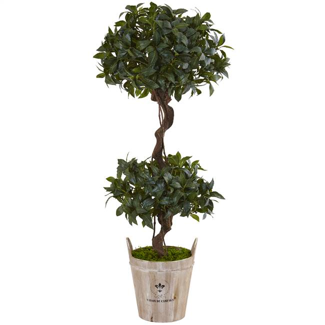 4.5' Sweet Bay Double Topiary Tree in Farmhouse Planter