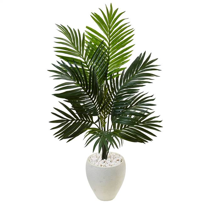 4.5' Kentia Palm Tree in White Oval Planter