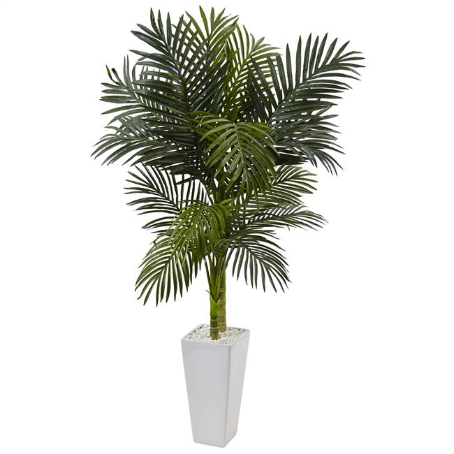 5' Golden Cane Palm Tree in White Tower Planter