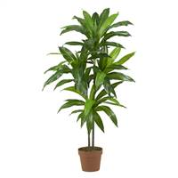 "48"" Dracaena Silk Plant (Real Touch)"
