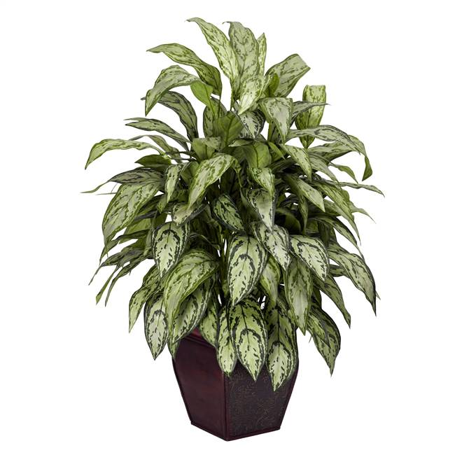 Silver Queen w/Decorative Planter Silk Plant