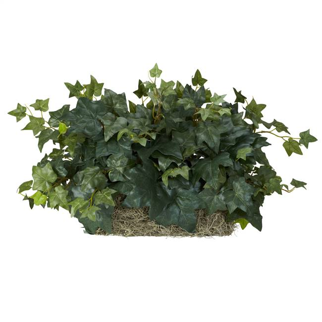 Ivy Set on Foam Sheet Silk Plant