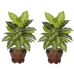 Dieffenbachia w/Wood Vase Silk Plant (Set of 2)