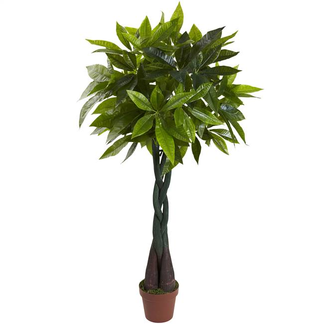 4' Money Plant (Real Touch)