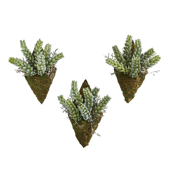 "8"" Sedum Succulent Artificial Wall Decor Plant (Set of 3)"