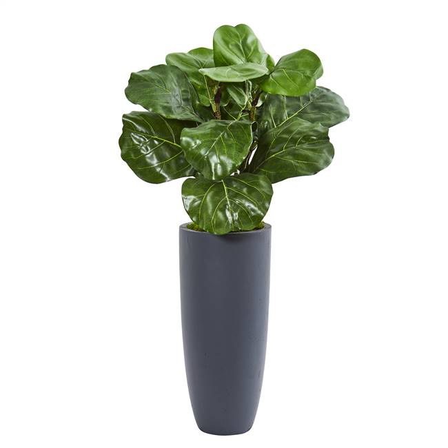 "36"" Fiddle Leaf Artificial Plant in Gray Planter"