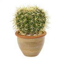 "10"" Cactus Artificial Plant in Decorative Ceramic Planter"