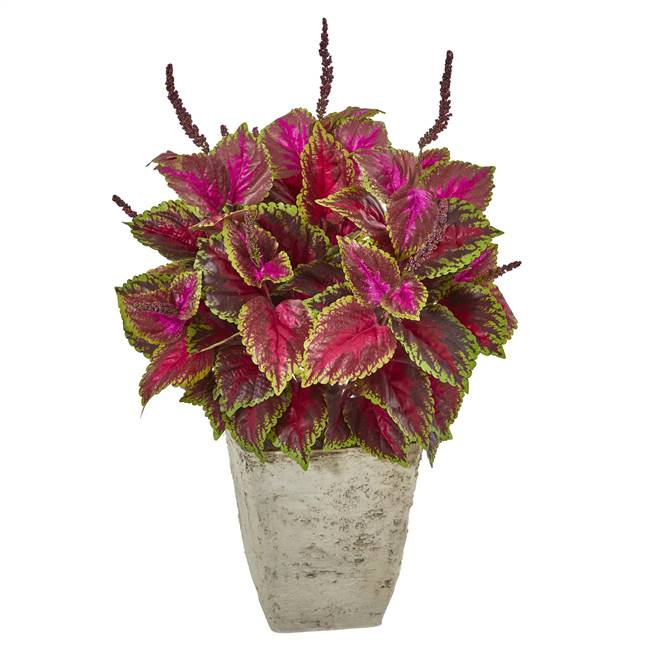 "34"" Coleus Artificial Plant in Country White Planter"