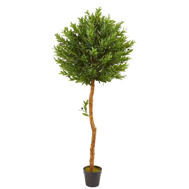 5.5' Olive Topiary Artificial Tree UV Resistant (Indoor/Outdoor)