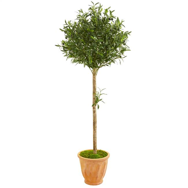 5' Olive Topiary Artificial Tree in Terra Cotta Planter