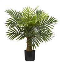 "26"" Robellini Palm Artificial Tree"