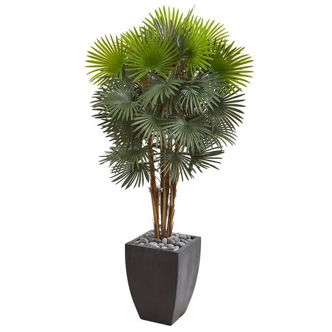 "59"" Fan Palm Artificial Tree in Black Planter"