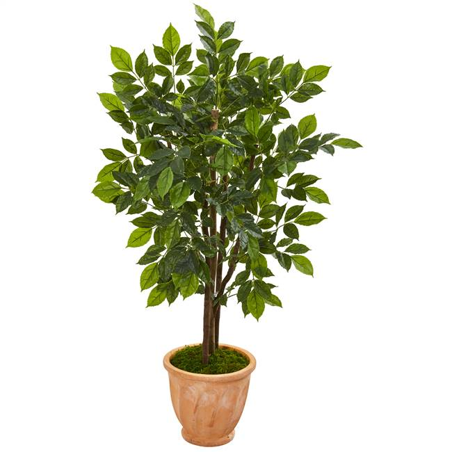 "53"" River Birch Artificial Tree in Terra Cotta Planter"