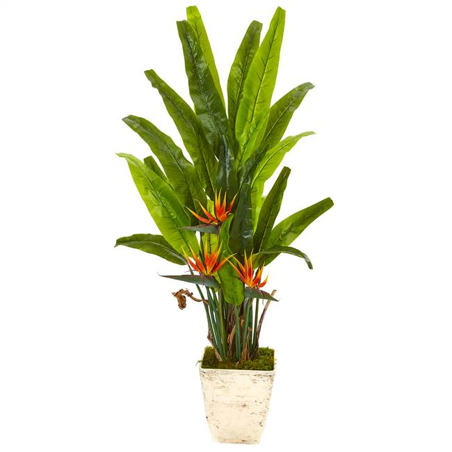 "59"" Bird of Paradise Artificial Plant in Country White Planter"