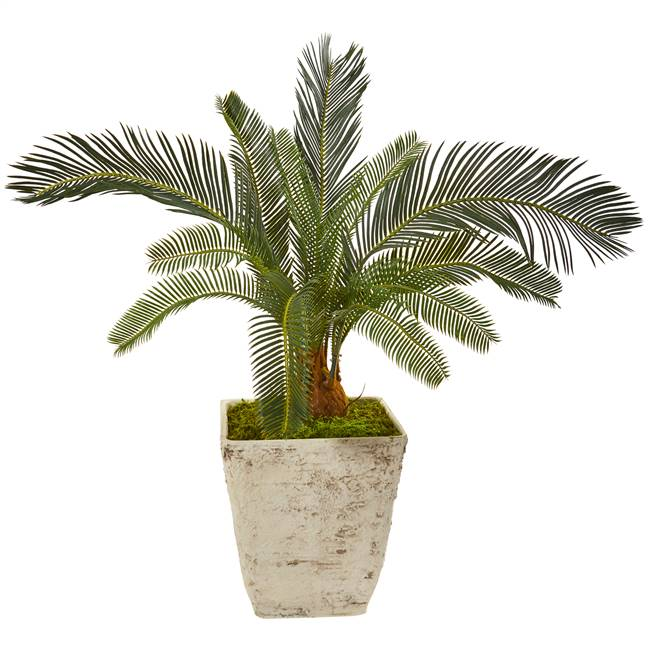 "31"" Cycas Artificial Plant in White Planter"