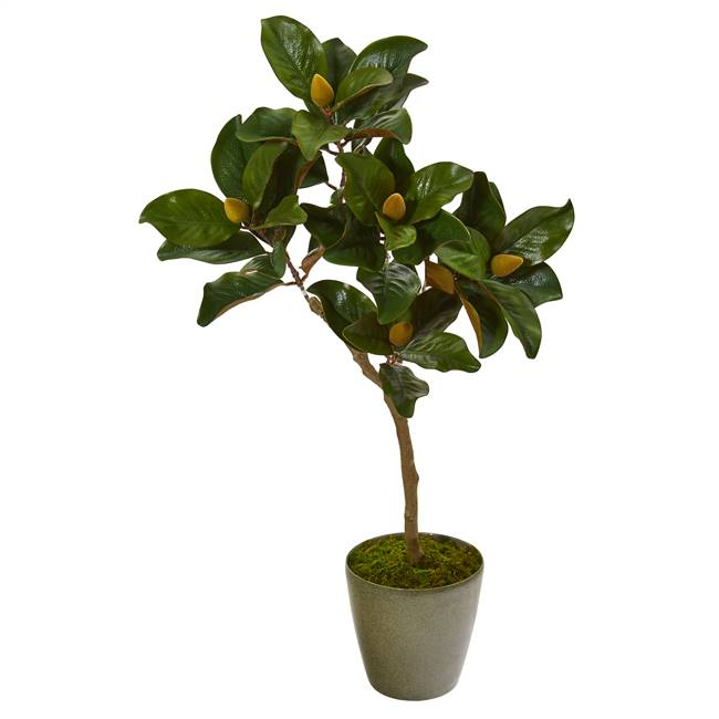 "41"" Magnolia Leaf Artificial Tree in Olive Green Planter"