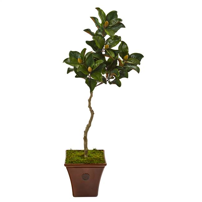 "57"" Magnolia Artificial Tree in Decorative Planter"