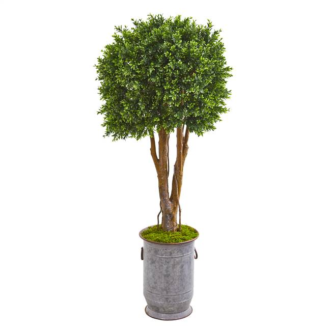 "55"" Boxwood Artificial Topiary Tree in Planter UV Resistant (Indoor/Outdoor)"
