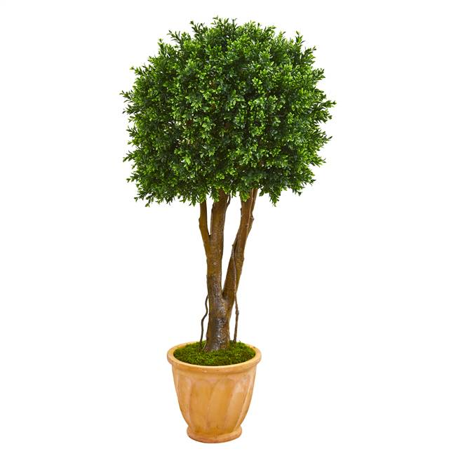 "50"" Boxwood Artificial Topiary Tree in Terra-Cotta Planter UV Resistant (Indoor/Outdoor)"
