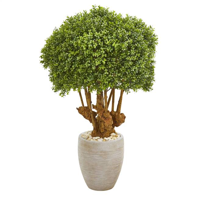 "41"" Boxwood Artificial Topiary Tree in Sandstone Planter (Indoor/Outdoor)"