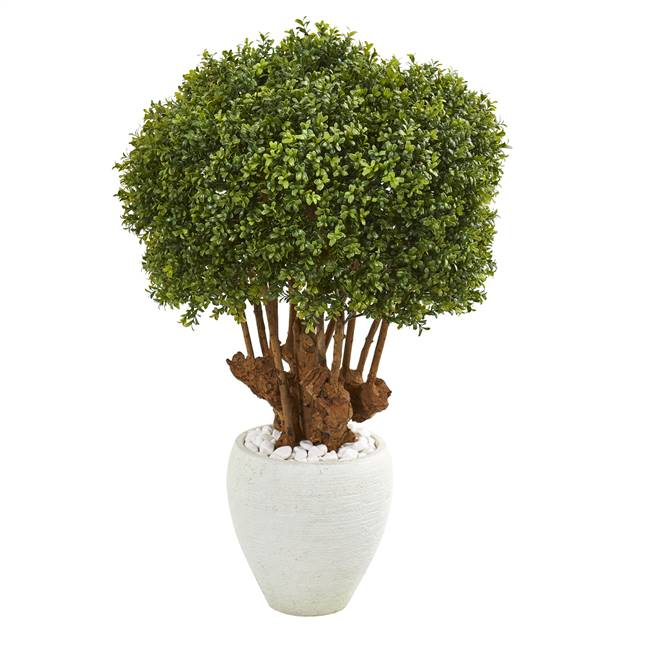 "41"" Boxwood Artificial Topiary Tree in White Planter (Indoor/Outdoor)"