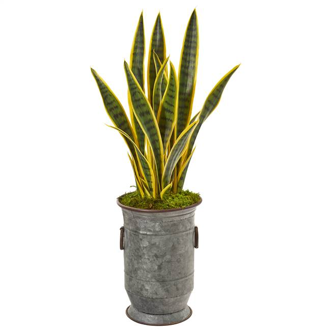 "33"" Sansevieria Artificial Plant in Vintage Metal Planter"