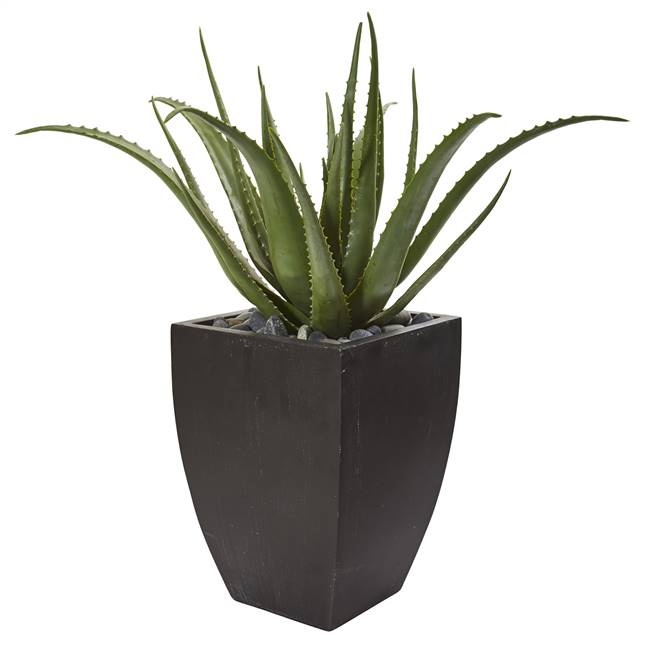 "31"" Aloe Artificial Plant in Black Planter"