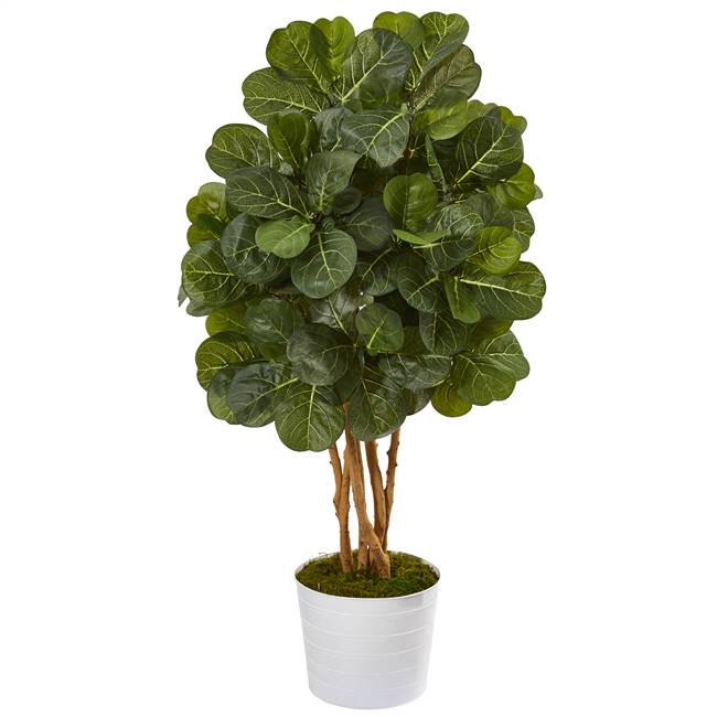 "50"" Fiddle Leaf Fig Artificial Tree in White Tin Planter"