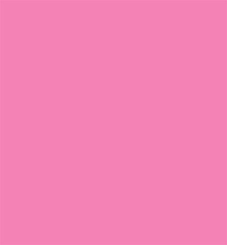 Design Master Pink Petunia 11oz