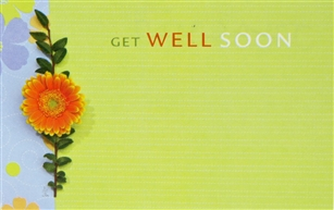 """Get Well Soon"" Daisy Vine Enclosure Cards (pack of 50)"