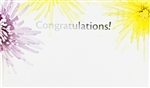 """Congratulations"" Colored Mums Enclosure Cards (pack of 50)"
