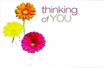 """Thinking of You"" Daisy Enclosure Cards (pack of 50)"