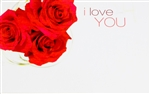 """I Love You"" Roses Enclosure Cards (pack of 50)"