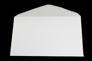 Enclosure Card Envelope (pack of 100)