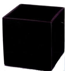 Black Cube Glass Vase 4x4x4