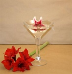 Martini Glass 12""