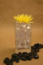 Square Glass Vase 3x4x8