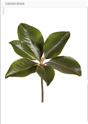 "14"" MAGNOLIA PICK - GREEN, 8"" Bloom, 1 Stem"