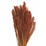 "Hilander Grass, 1 pc/bunch, 26"", Burnt Oak"