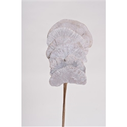 "Mushroom Sponge 16"", White, 6pc/Bunch"