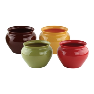 "4 1/2"" Jardiniere, Safari Assortment,  Pack Size: 24"