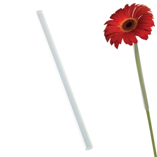 "8 1/4"" Flower Gerbera Straw, Crystal,  Pack Size: 2500"