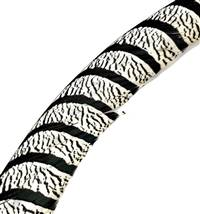 "Lady Amherst Tail Centers 30-35"", Washed (Zebra Striped) - Each"
