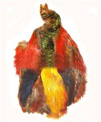 "Golden Pheasant ""Bird in a Bag"""