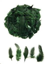 Guinea Fowl Plumage Dyed Green - Per 1/2 lb