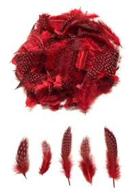 Guinea Fowl Plumage Dyed Red - Per 1/2 lb