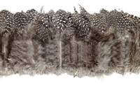 "Strung Guinea Fowl Plumage, Small Eyes 2-3"" - Per 1/2 lb"