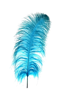 "17-21"" Ostrich Feathers - Turquoise (1/2 Pound)"