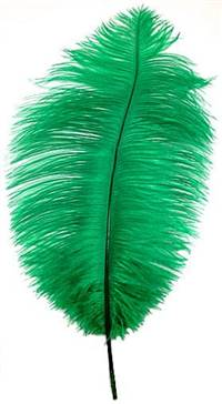 "Ostrich Drabs 14-16"" Dyed Green - Per 1/2 lb"